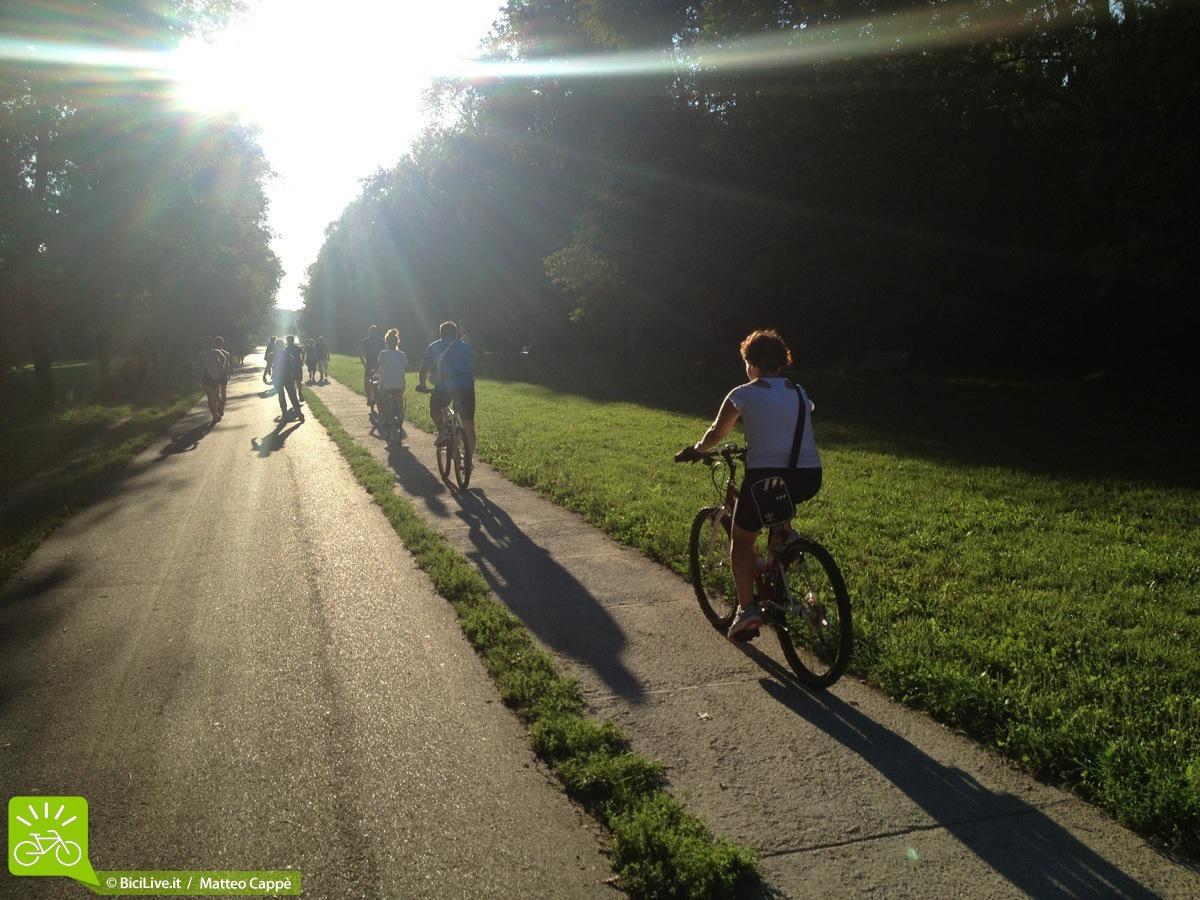 Una pista ciclabile in un parco cittadini