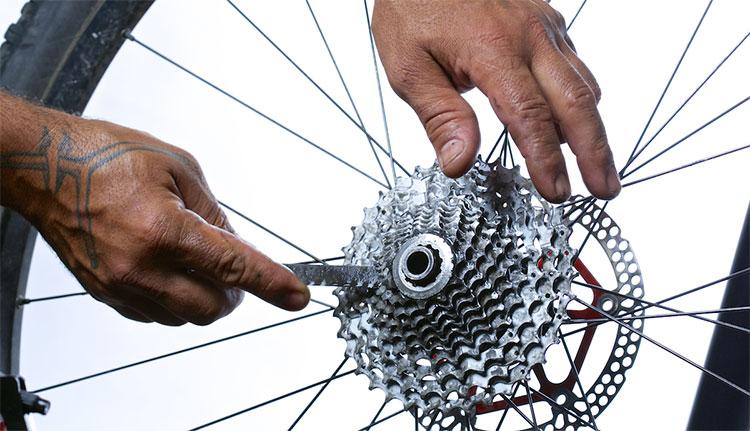 Un esperto di ciclomeccanica al lavoro su un pacco pignoni