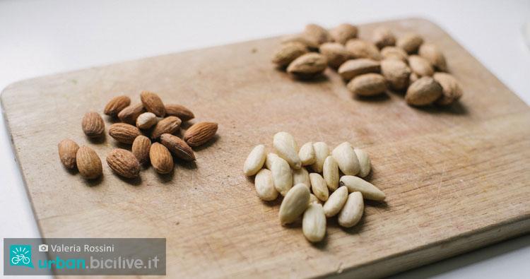 Mandorle: tre varietà del frutto oleoso su un tagliere