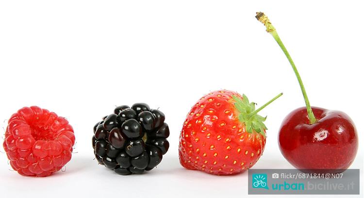 bacche e frutta come alimento per ciclisti