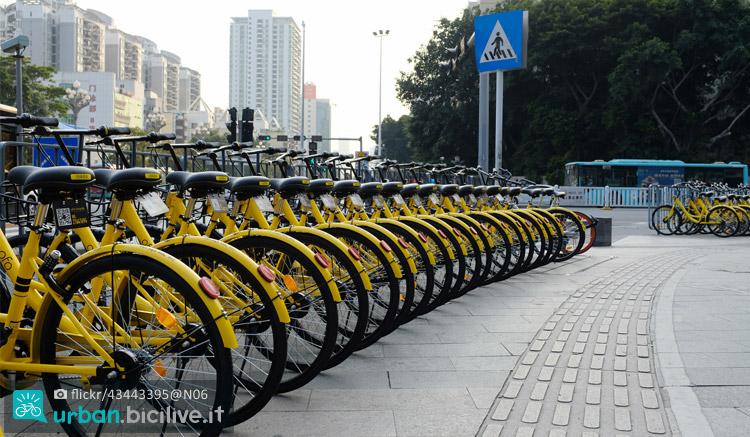 biciclette ofo parcheggiate per il bike sharing