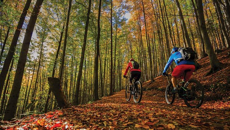 cicloviaggiatori pedalano responsabilmente in un bosco