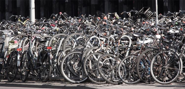 Tantissime biciclette parcheggiate