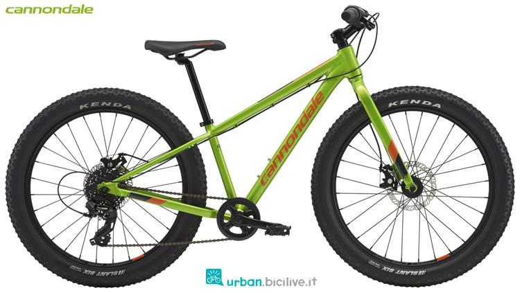 Una bicicletta da ragazzino Cannondale Kids Cujo 24