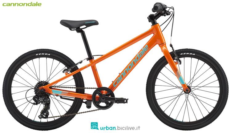 Una bici da ragazzo Cannondale Kids Quick 20 Boy's