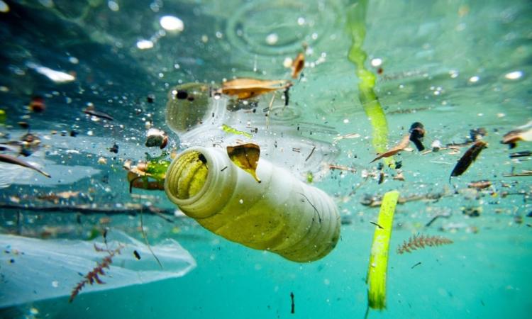 inquinamento plastica Ons 2019