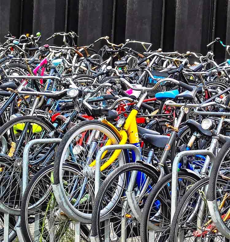 Decine di biciclette parcheggiate