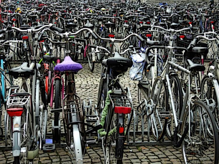 Numerose biciclette parcheggiate in città