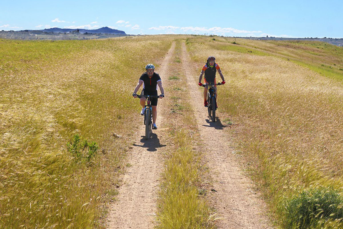 Due uomini in bici in un campo
