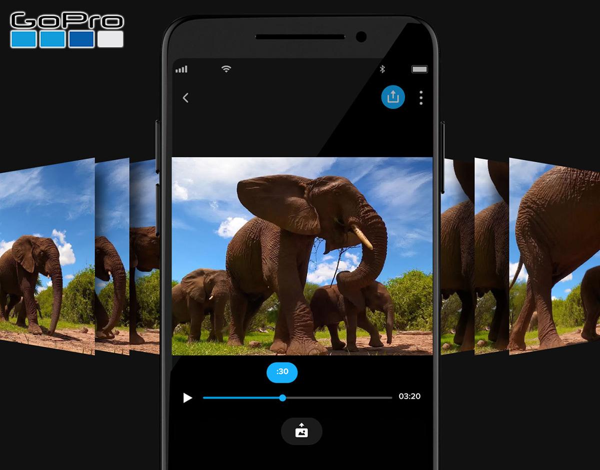 Una foto di un elefante scattata con la funzione LiveBurst della GoPro HERO9 Black