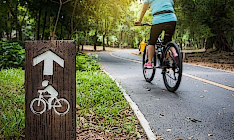 Ciclista pedala su una pista ciclabile nel verde