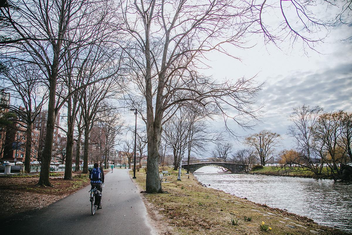 Un ciclista pedala sulla pista ciclabile in città