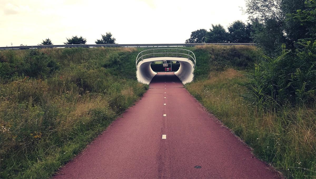 Una pista ciclabile olandese passa sotto un ponte