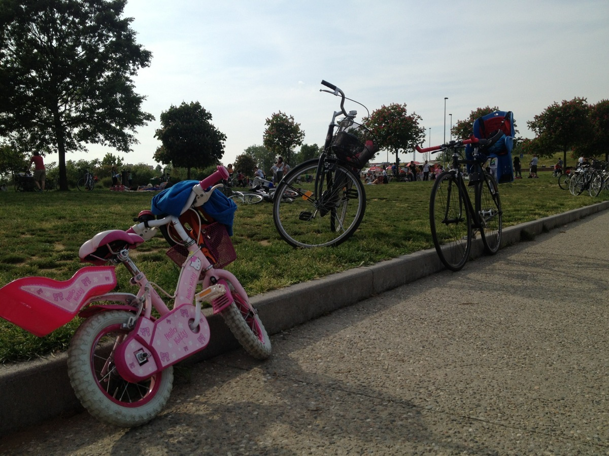 Biciclette di vario tipo e colore parcheggiate al parco